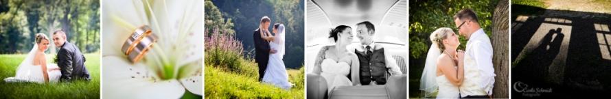 Hochzeit 2 LOGO
